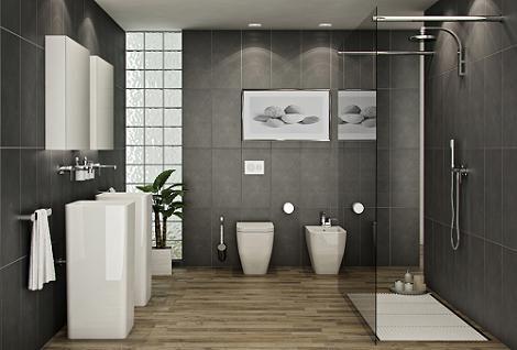 Ba os modernos con ducha decoraci n for Banos bonitos con ducha