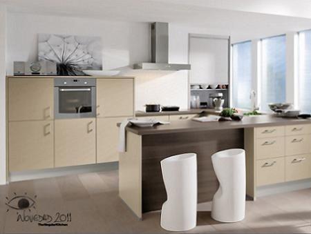 Nuevas cocinas 2011 de The Singular Kitchen